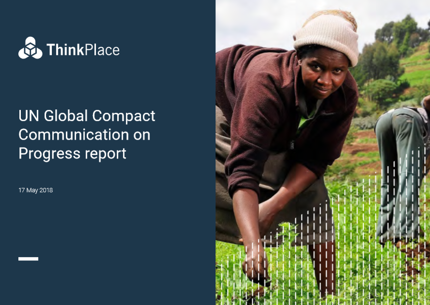 ThinkPlace UN report