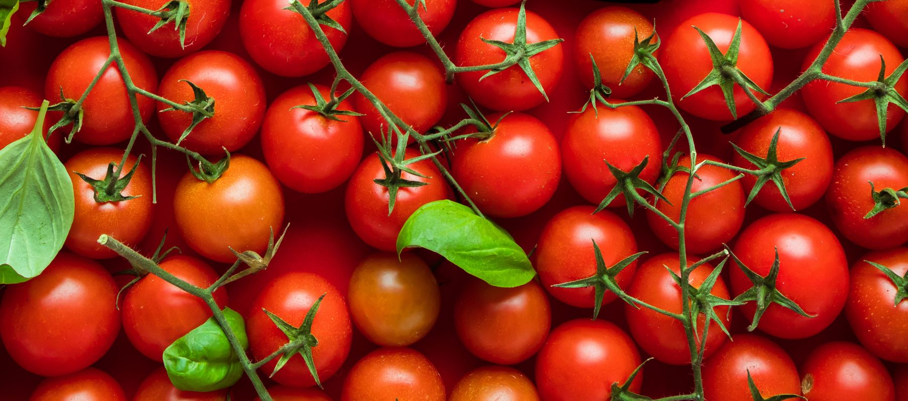 ThinkPlace designer Eliot Duffy says tomatoes might tell a story about the meaning of innovation