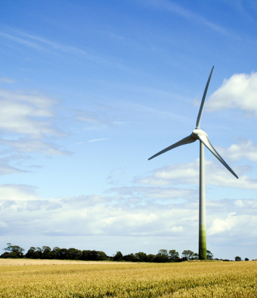 Connecting and empowering energy innovators across Queensland